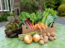 Fresh Veg Box